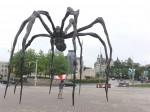 Araignee Ottawa.JPG